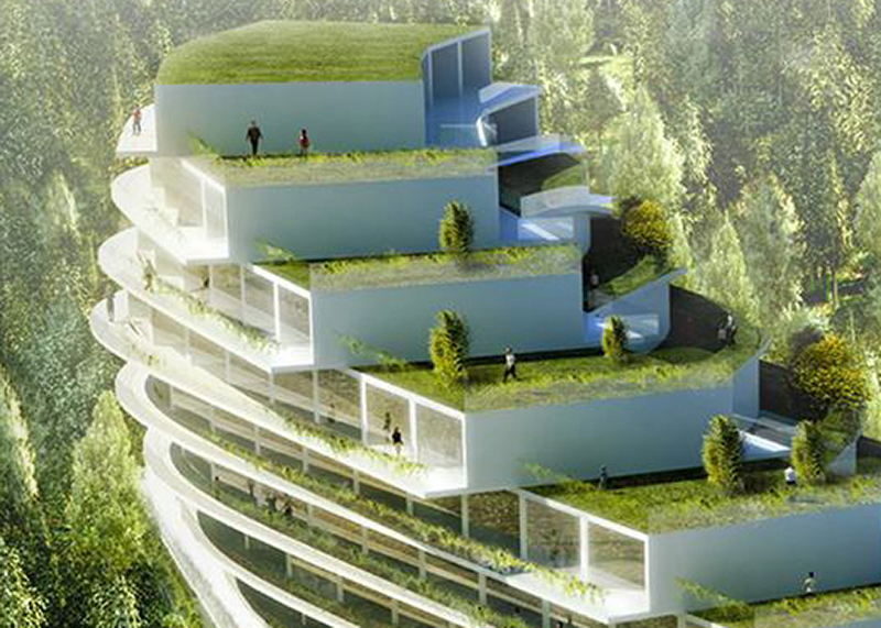 green and urban roofs